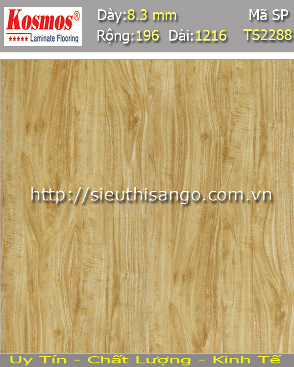 Sàn gỗ KOSMOS 8mm TS2288